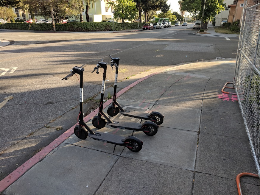 bird scooters, electric scooters