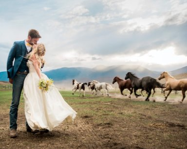Wild horses won't keep people from seeing your special day.